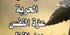 ابيات شعر قويه عن عزة النفس