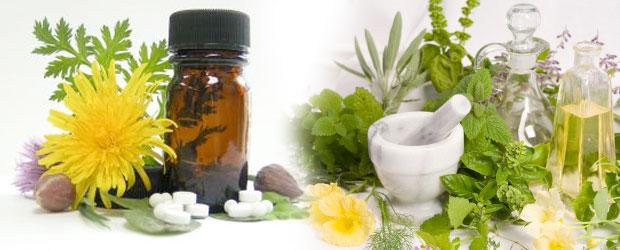علاج البواسير بالاعشاب بـ 5 أعشاب سوف ينتهي الألم