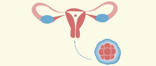هل يحدث حمل بعد الغسل من الدوره بيوم