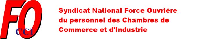 FO-CCI Syndicat National Force Ouvrière du Personnel des Chambres de Commerce et d'Industrie