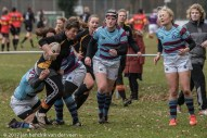 sport-rugby-lady bears 1-16