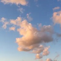 【FN】バラ色の雲