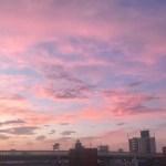 バラ色の朝焼け