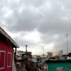 Poverty in the Philippines: Urban and Rural Poverty