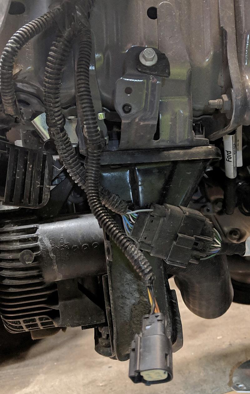 hight resolution of engine wiring harnes headlight wiring harnes