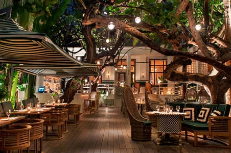 Where To Eat In Miami Now Fodors Travel Guide