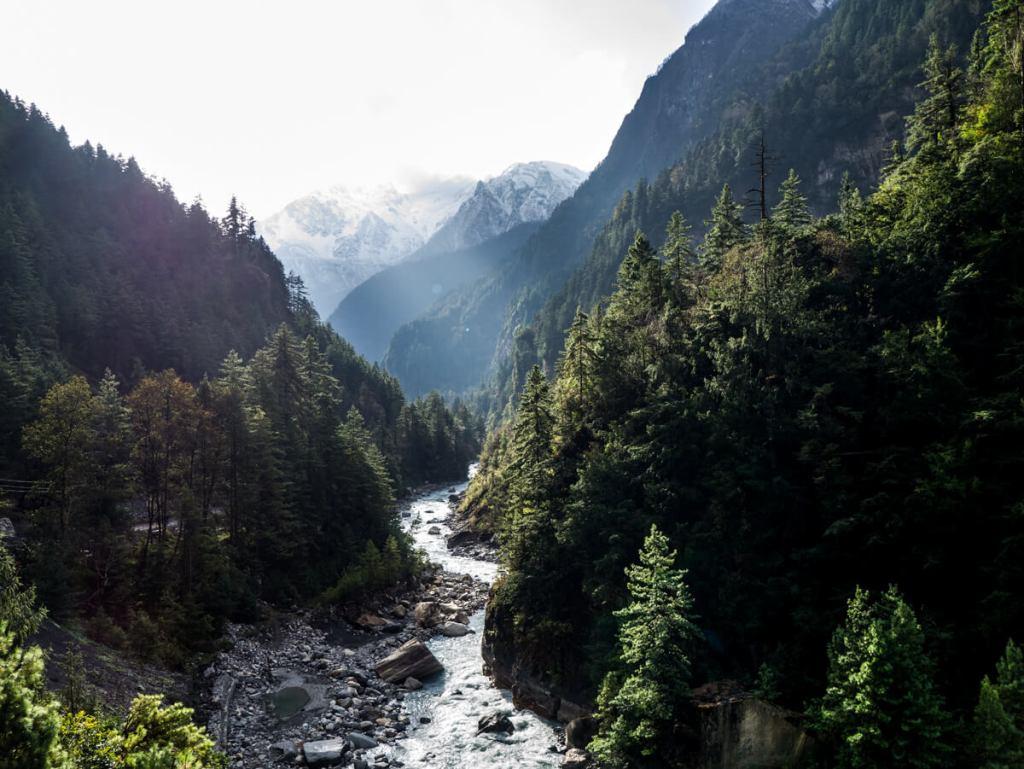Annapurna Chamje