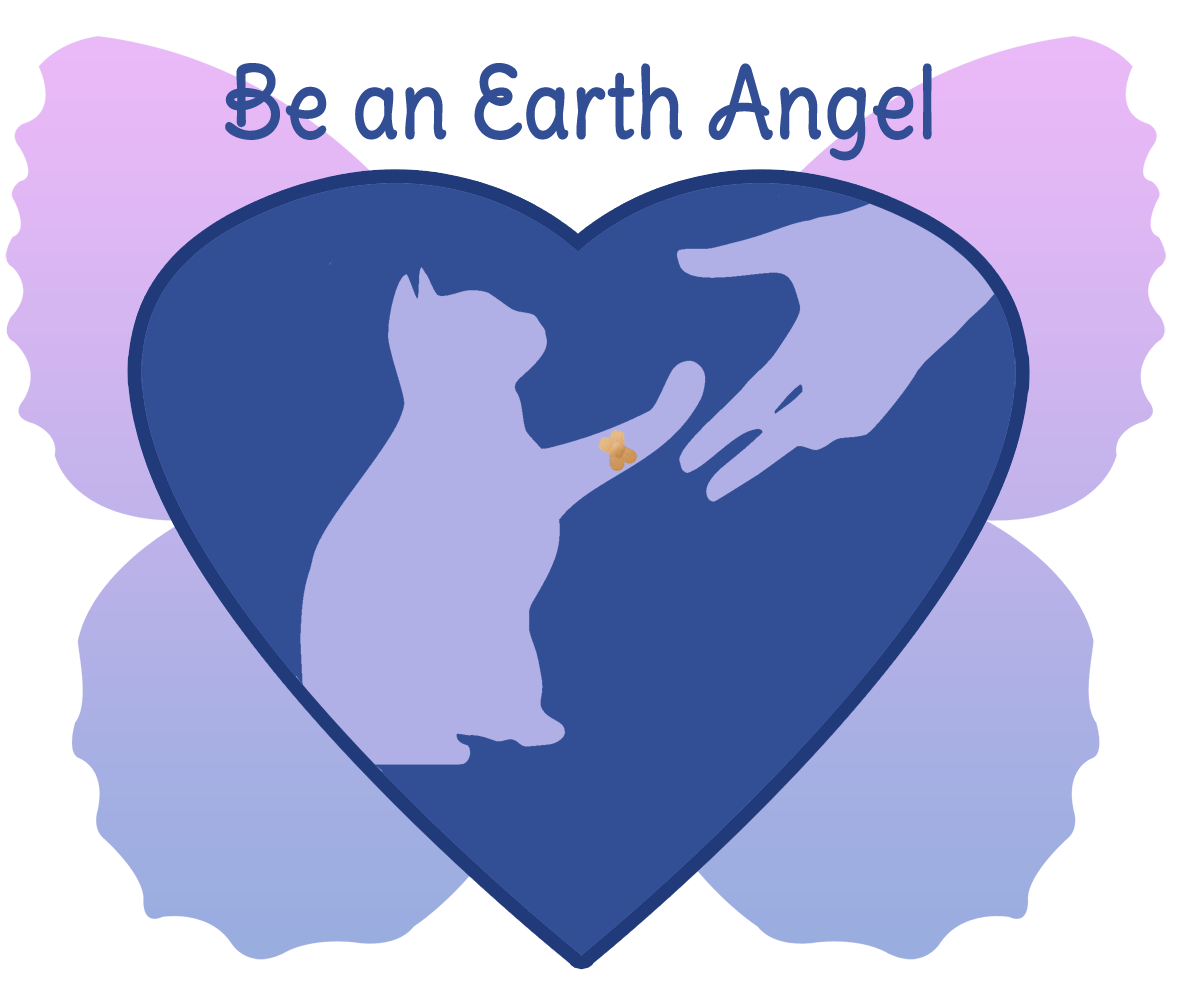 Be an Earth Angel to FFRC Friends of Felines Rescue Center