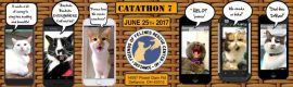 Announcing CatAThon 2017
