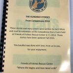 The Hundred Stories