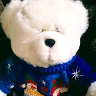 Bear (square)