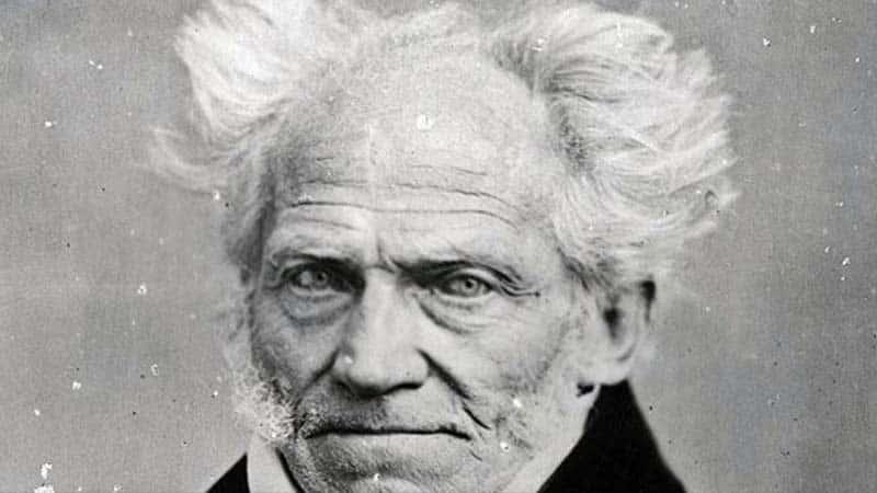 Schopenhauer fikirleri