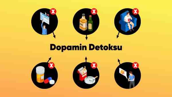 Dopamin-Detoksu