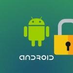 Cara Mudah Unlock Bootloader (UBL) Mi A1 (Tissot) Tanpa SMS Persetujuan