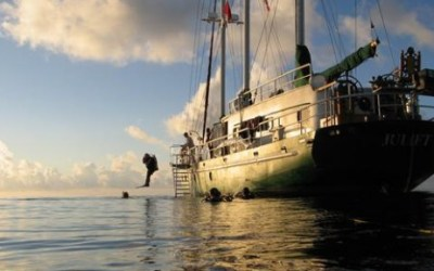 Learn to hunt lionfish and try out a Foldspear