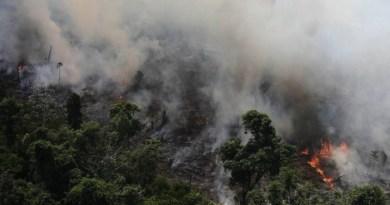 queimadas-amazonia