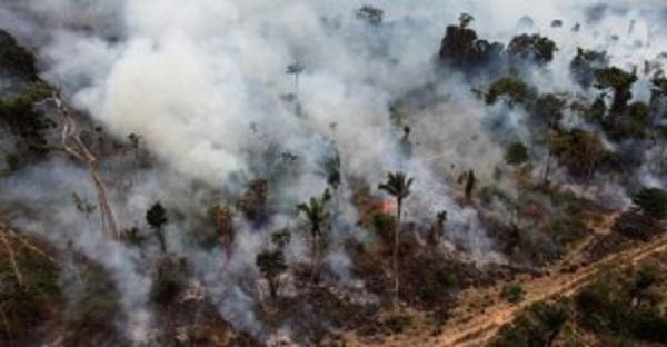 set2009-trecho-de-floresta-amazonica-queimada-ilegalmente-em-novo-progresso-no-para-1338999177572_956x500-300x156