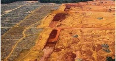 Área-de-exploração-mineral-na-Flona-Saracá-Taquera