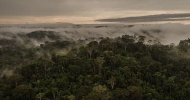 ITAITUBA, PARÁ, BRASIL, 02-06-2017: Equipe de elite do IBAMA faz operação contra garimpo na comunidade Aruri que serve como base de abastecimento a garimpeiros da região. (Foto: Avener Prado/Folhapress, COTIDIANO) Código do Fotógrafo: 20516 ***EXCLUSIVO FOLHA***