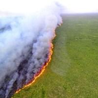 Justiça decreta indisponibilidade de quatro fazendas no Pantanal de MT por dano ambiental
