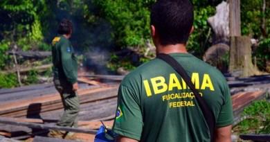 Ibama-1024x683