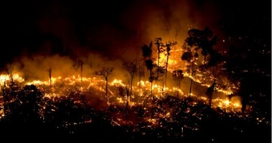 fogo-queimadas