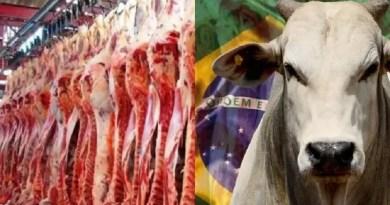 carne-brasileira-640x478