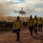 Operação Verde Brasil 2 apreende motosserras, munições e madeira ilegal em Novo Progresso
