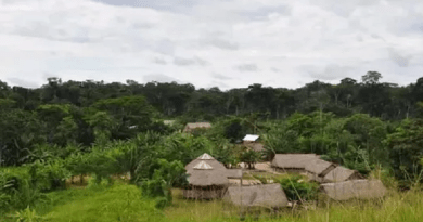 terras indigenas