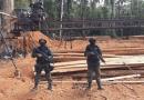 Polícia desmonta serraria clandestina na região do Chapadão, próximo a Santarém