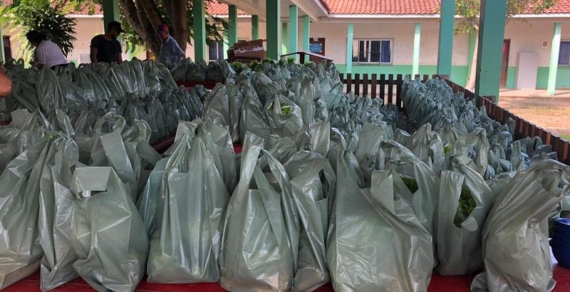 Kit sendo distribuídos nas escolas (Foto:Divulgação SMED)