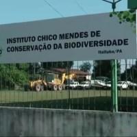 ICMBio cancela mega apreensão de gado na reserva biológica Nascentes da Serra do Cachimbo no Pará