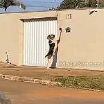 Mulher filma cachorro tocando campainha para entrar em casa em Mato Grosso