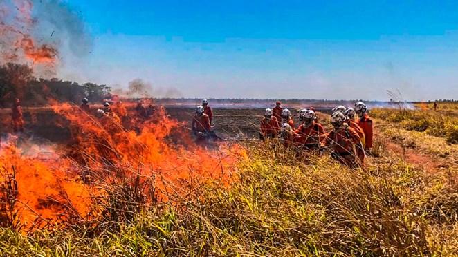Produtores rurais baianos se unem ao Corpo de Bombeiros para combater queimadas. Foto: Divulgação/Aiba