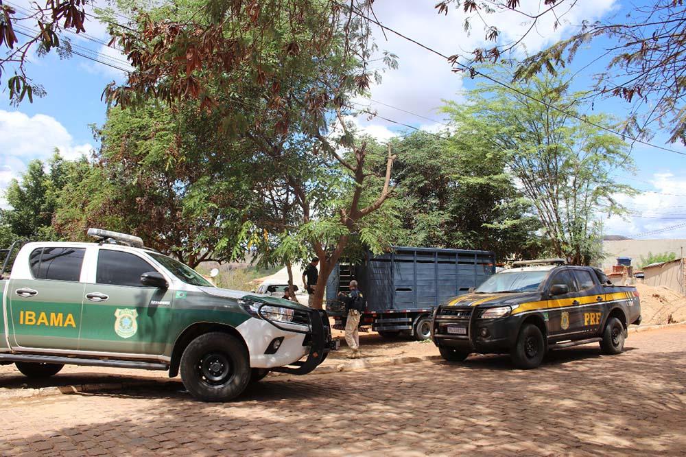 Operação Desdobramento flagra crimes ambientais e resgata animais silvestres na região da Bacia do Paraguaçu