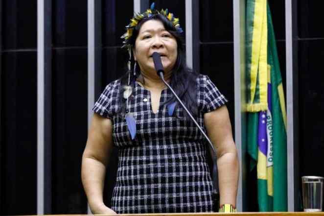 A deputada federal Joenia Wapichana (Rede-RR) coordena a Frente Parlamentar Mista em Defesa dos Direitos dos Povos Indígenas (Foto: Cleia Viana/Câmara dos Deputados)