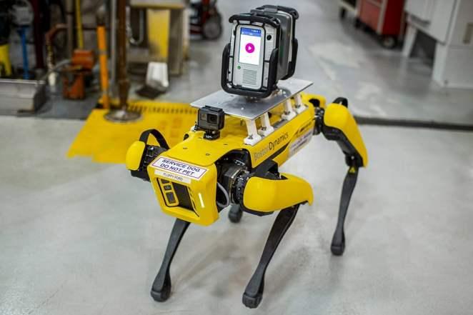 Ford-Fluffy cão robô (Foto: Divulgação/Ford)