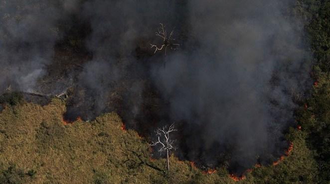 Entre os 30 municípios que tiveram maior aumento de desmatamento em 2019, mais da metade deles tiveram redução na aplicação de multas