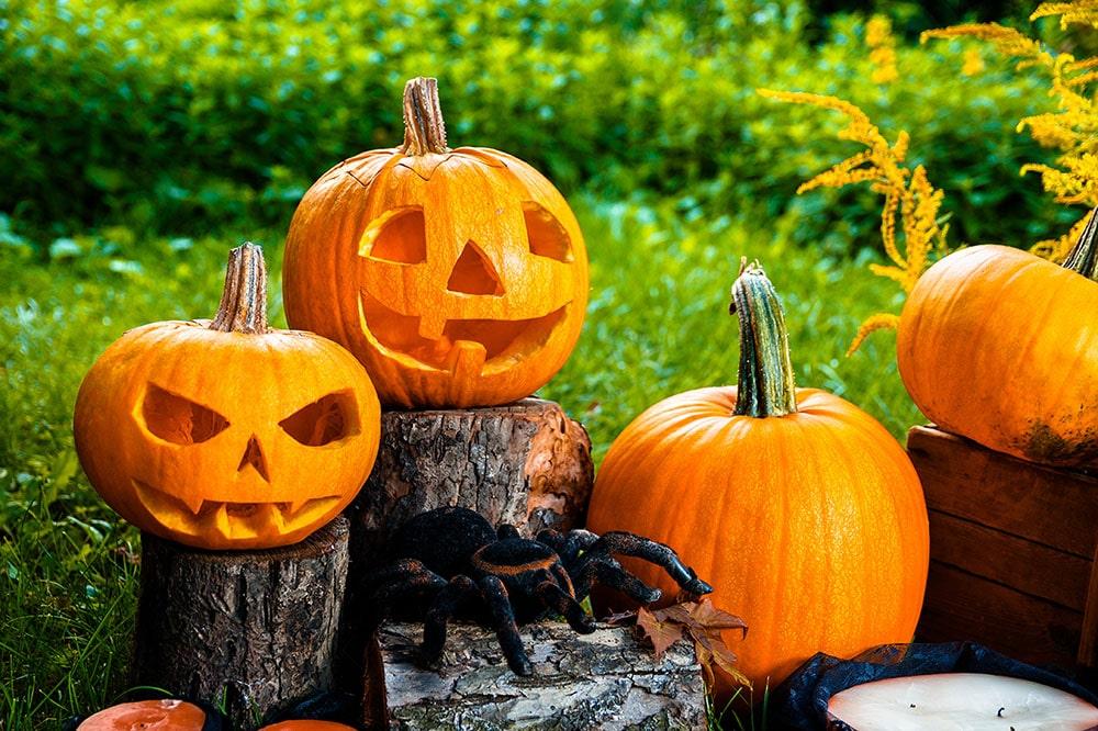 Halloween em casa: saiba como adaptar a festa