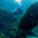 Mergulho em Guarapari é referência de acordo com o Ministério do Turismo