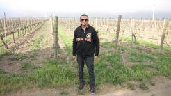 O Chile é famoso pela produção de vinhos e os turistas sempre procuram conhecer o processo de trabalho das vinícolas.