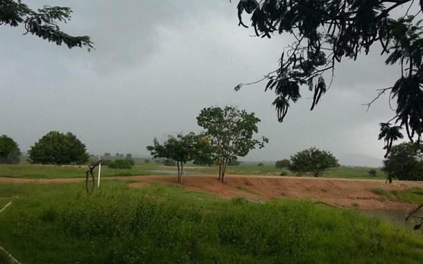 Alegria sertaneja: Boas chuvas em toda a região