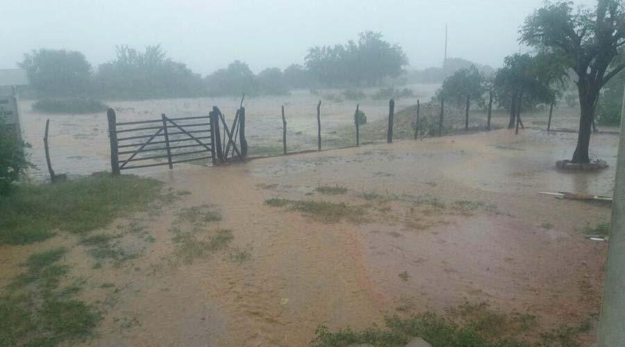 Chove bem no Sítio Mocambo, zona rural de Patos