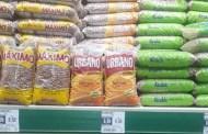 Feijão acima dos 8 reais preocupa o consumidor patoense