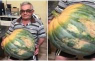 Agricultor colhe jerimum gigante em Brejinho