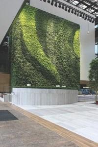 Living Walls & Green Wall Systems in Atlanta GA