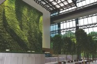 Living Walls & Green Wall Systems in Atlanta GA