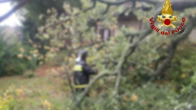 Piante, rami caduti e un tetto scoperchiato, danni a Foligno per maltempo