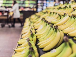 Consegna alimenti a domicilio, elenco esercenti sul sito del comune di Foligno