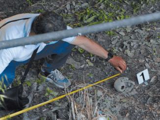 Il teschio trovato in via Isonzo non è umano, ma di resina con residui calcarei